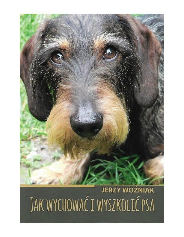 Jak wychować i wyszkolić psa