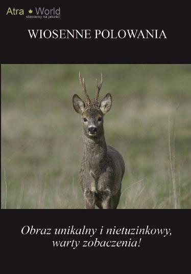 Wiosenne polowania