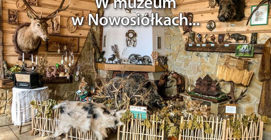 Łowieckie wędrówki w muzeum w Nowosiółkach…